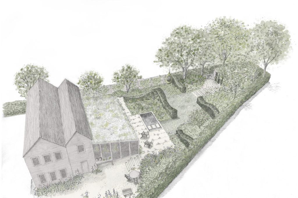 Apothecary Garden Drawing