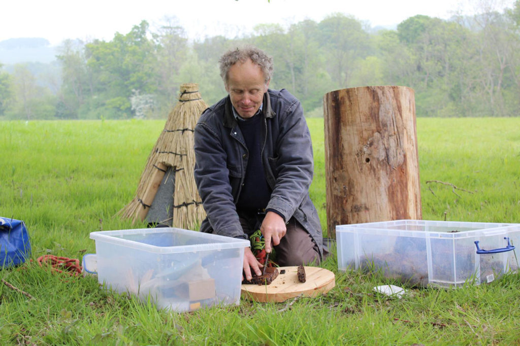 Beehives Preparation