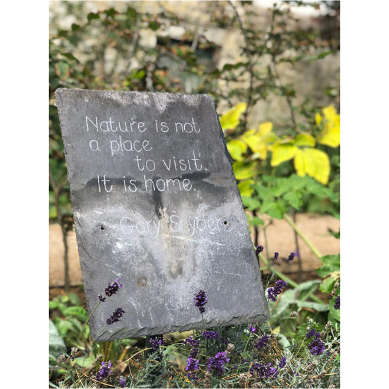 Blackthorn Trust Healing Garden Quotes