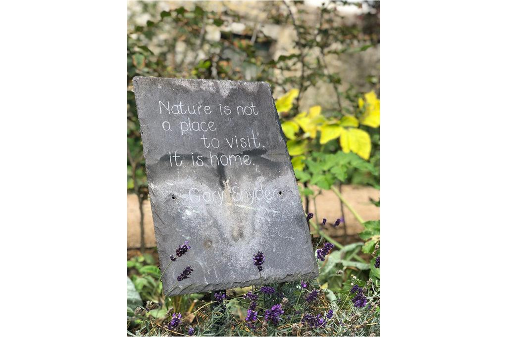 Blackthorn Trust Healing Garden Quotes