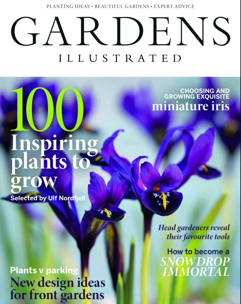 Cover Feb 19