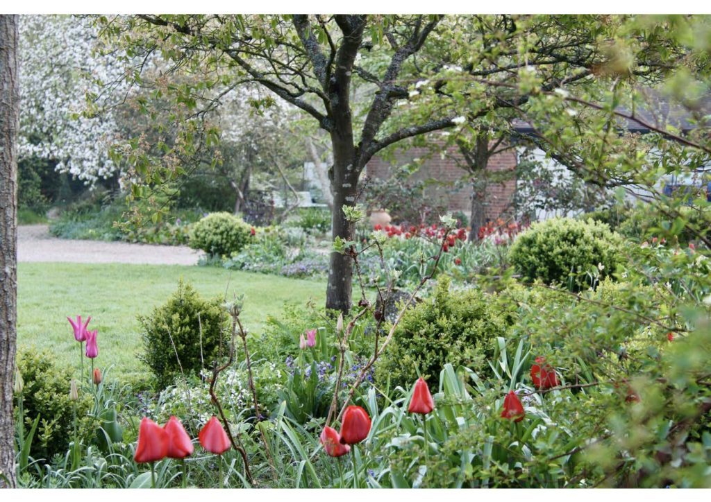 Garden Masterclass Image Reduced