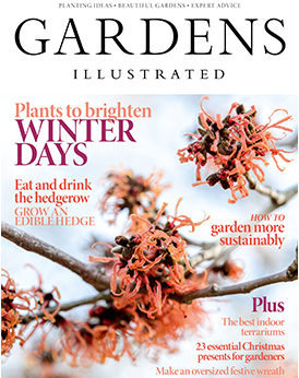 Gardens Illustrated December 2019
