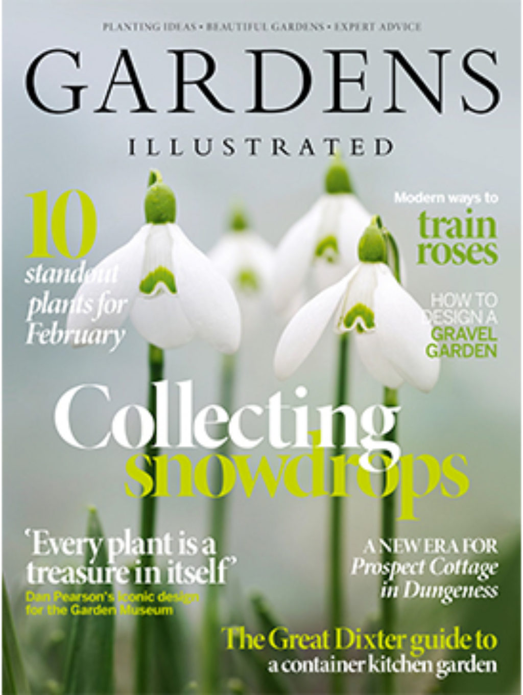 Gardens Illustrated February 2020 Cover