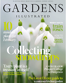 Gardens Illustrated February 2020