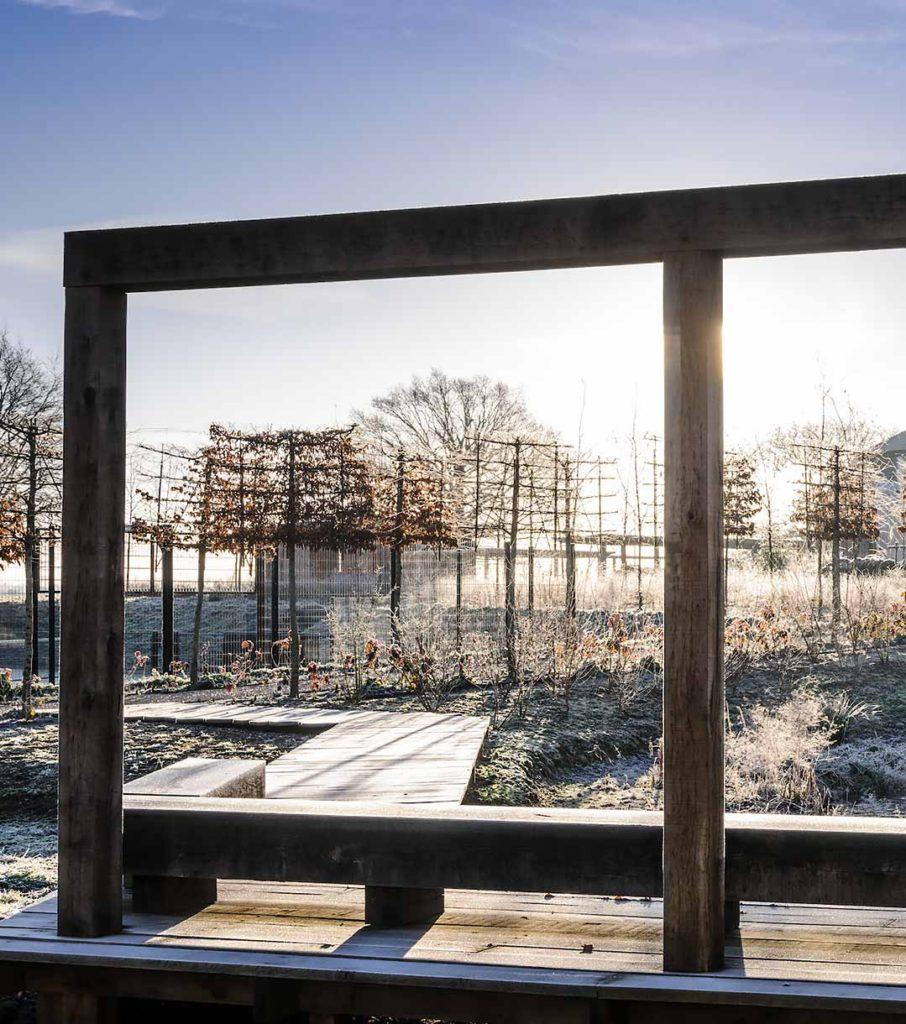 Marian Boswall Landscape Architects Plantswoman Garden