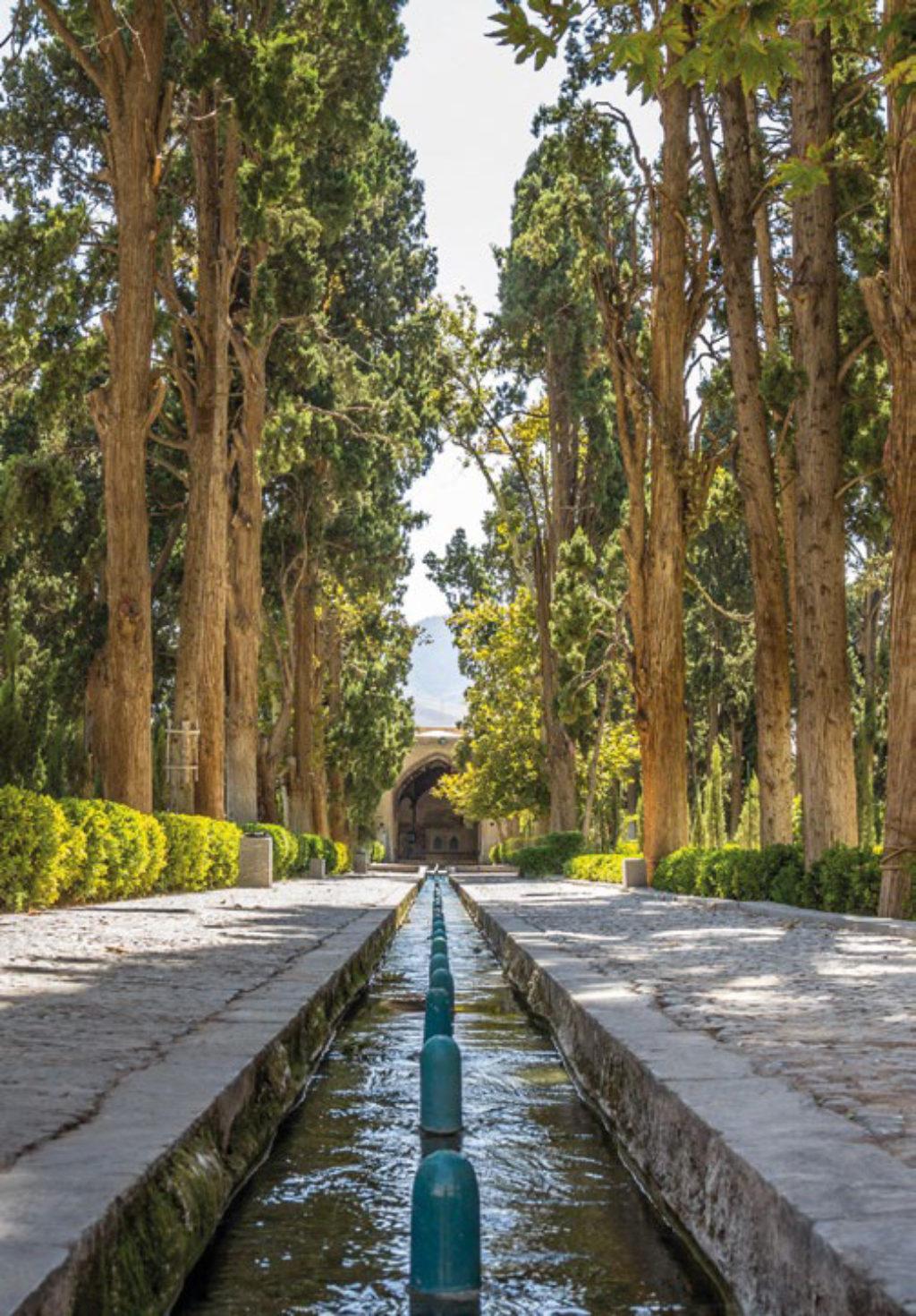 Paradise Garden Water