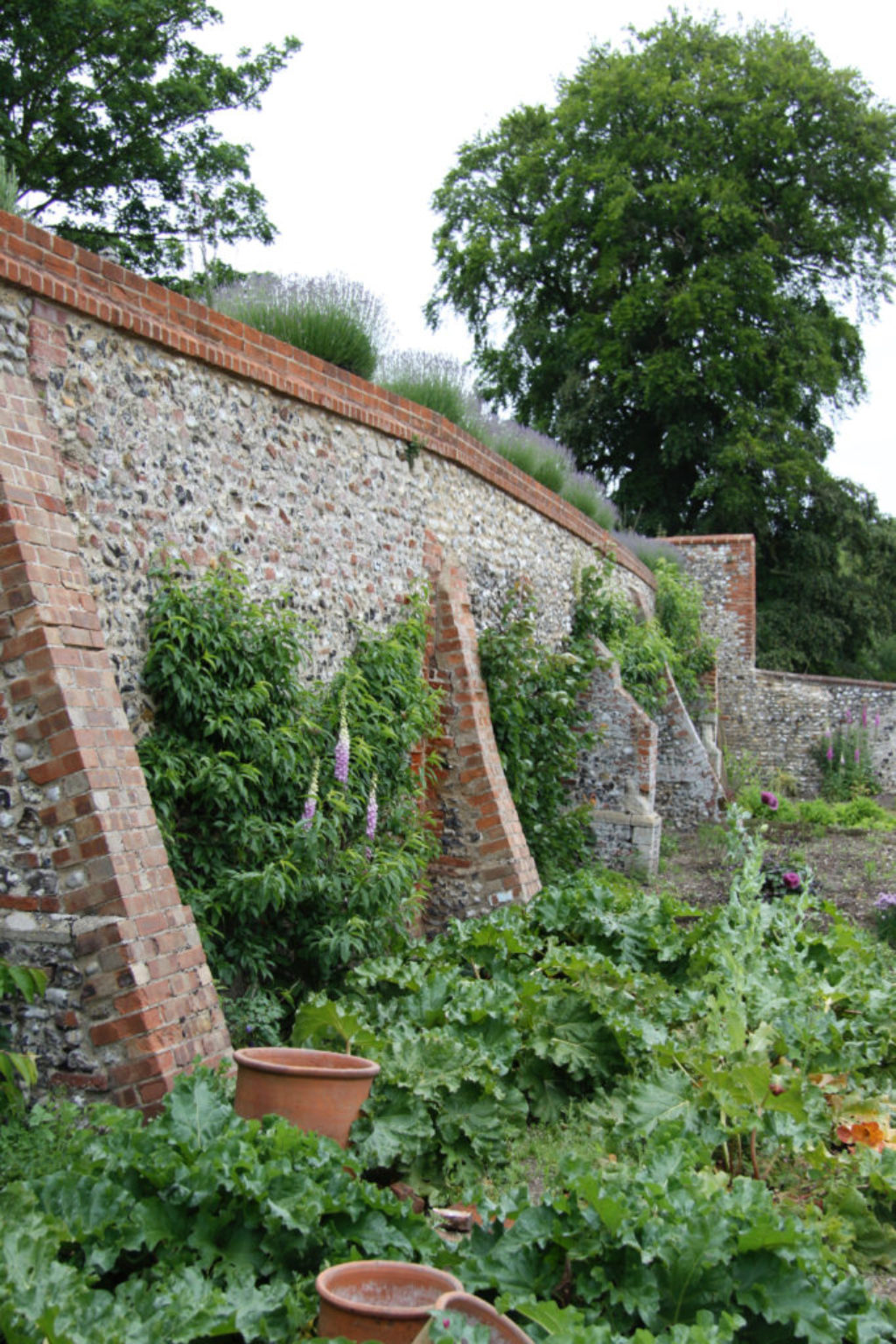 Piers For Strength On Old Garden Wall