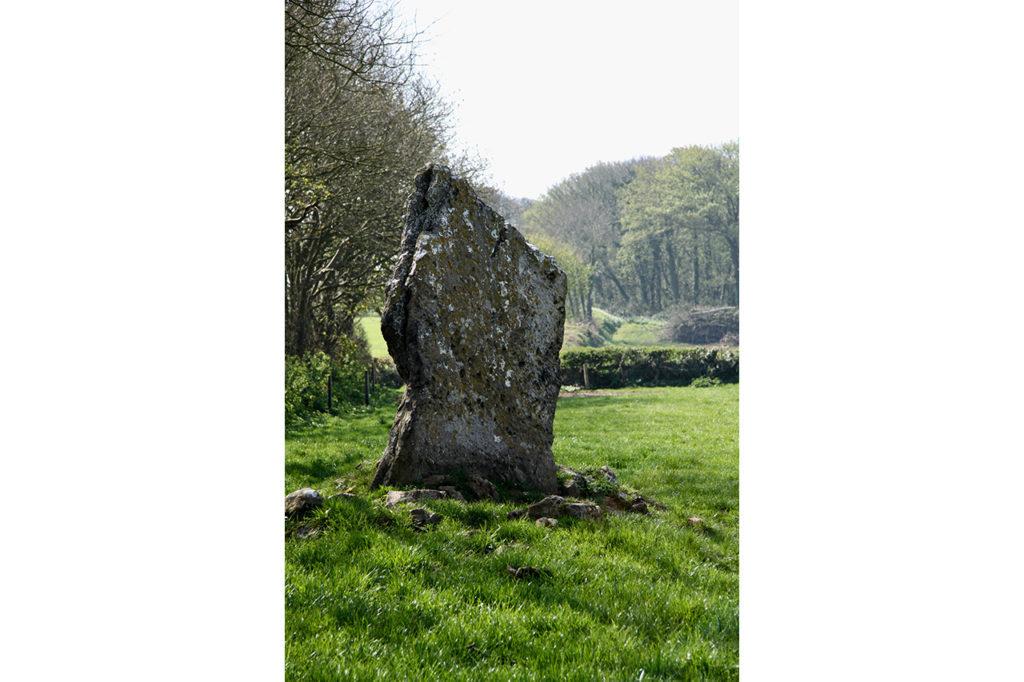Sanctuary Gardens Standing Stone