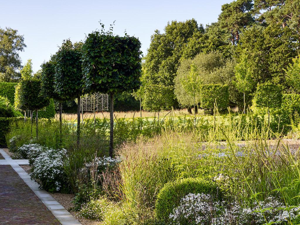 Sussex Garden12