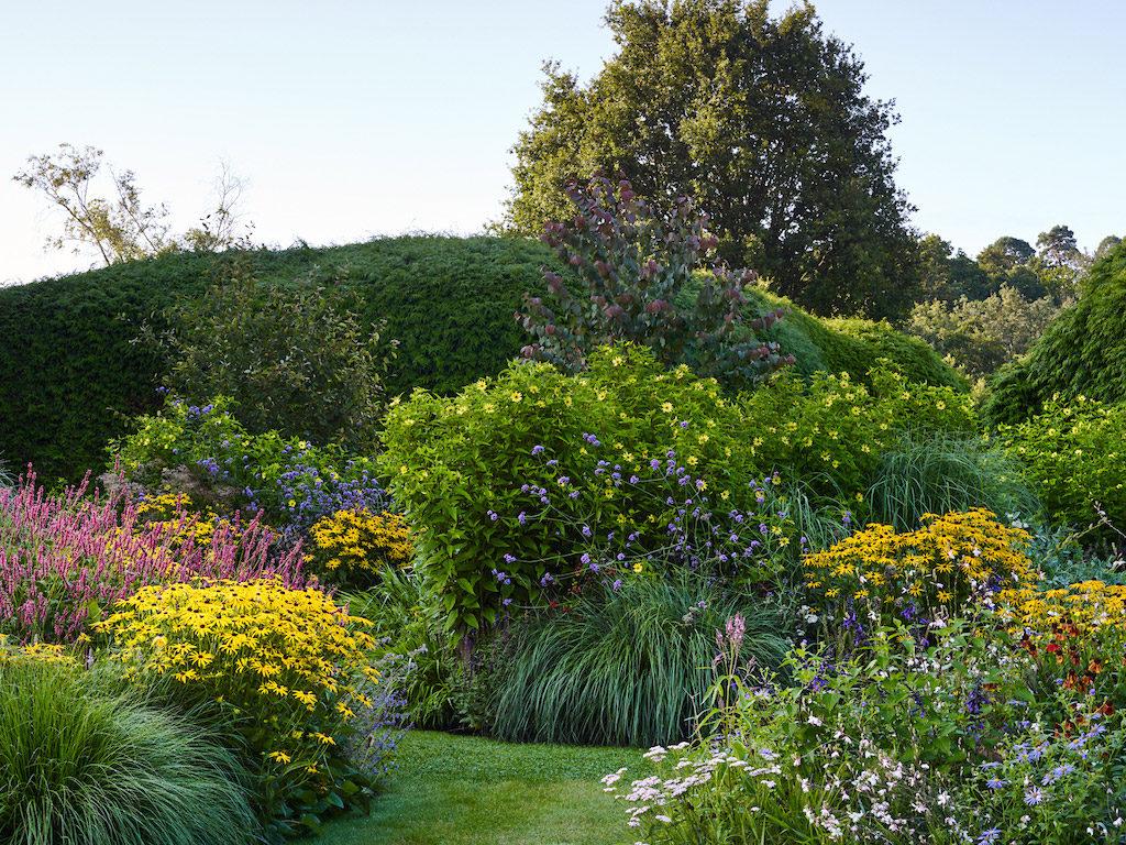 Sussex Garden4