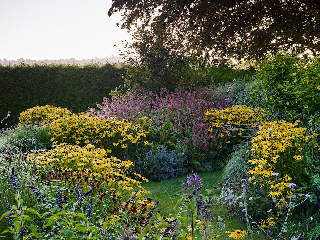 Sussex Garden9