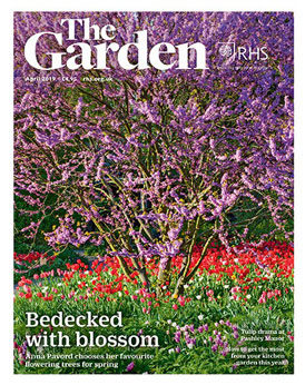 The Garden April 2019
