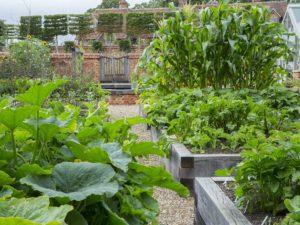 Amazing Garden Designers Kent
