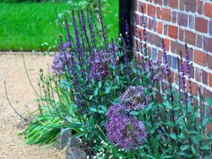 Beautiful Planting Schemes And Design
