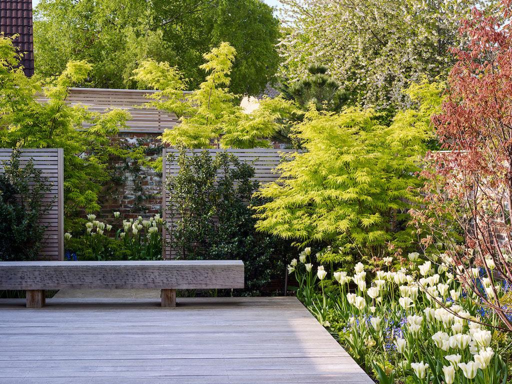 Bench Planting Courtyard