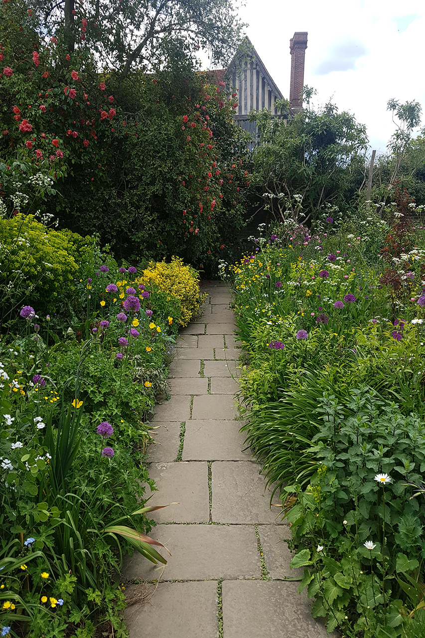 Borders Pathway Gardens Illustrated