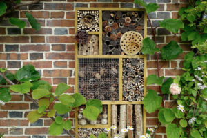 Bug Hotel Wall Design