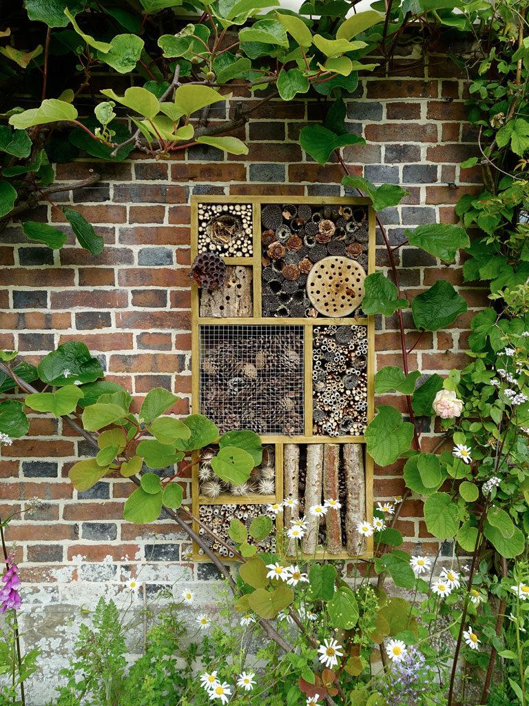 Bug Hotel Wall Design