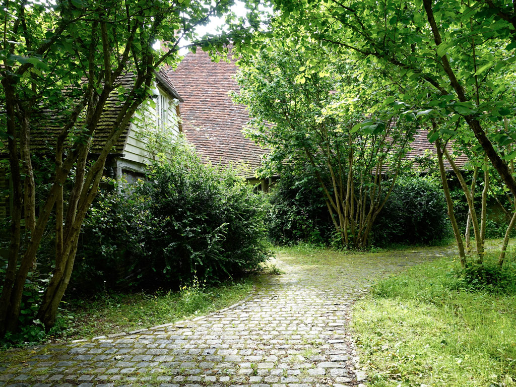 Cobbled Path Woodland