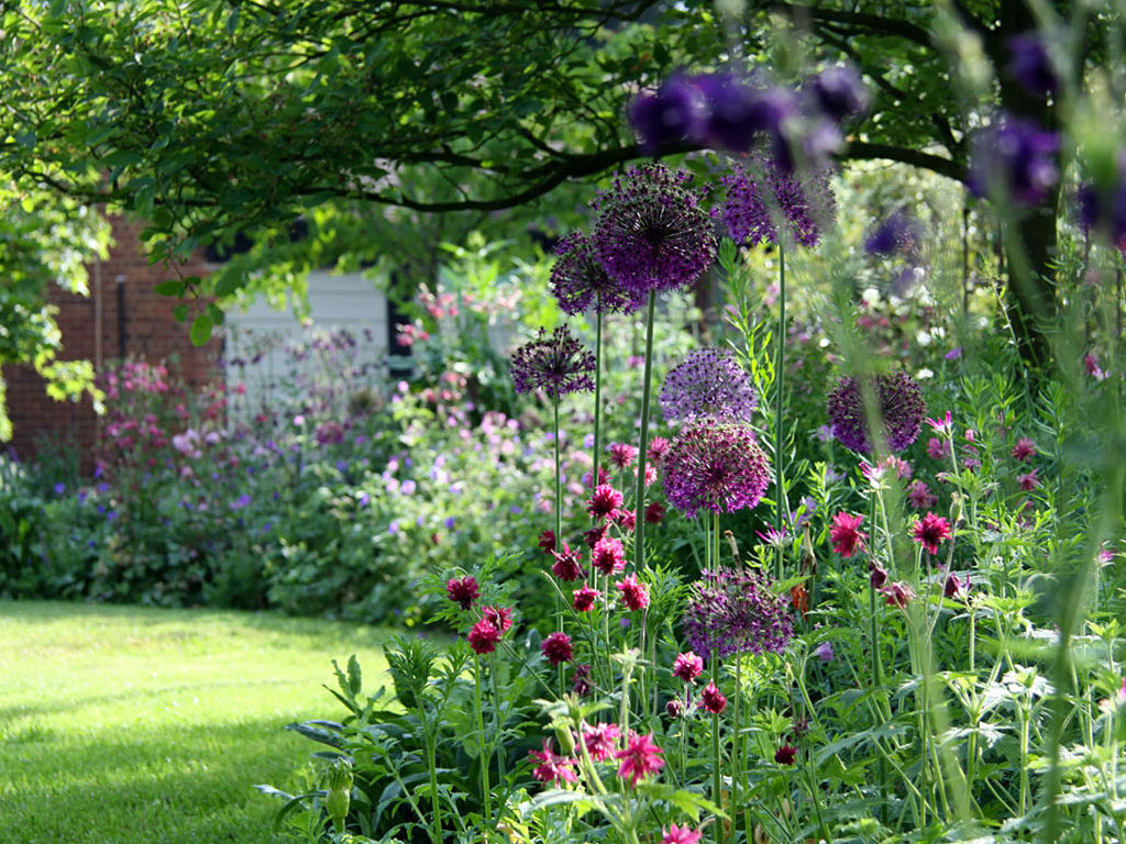 Contact Marian Boswall Landscape Architects