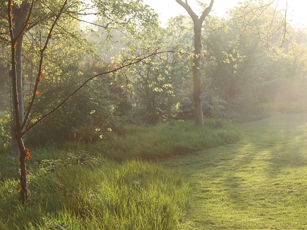 Dream Gardens By Marian Boswall