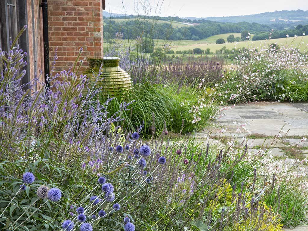 Eclectic Gardens Kent
