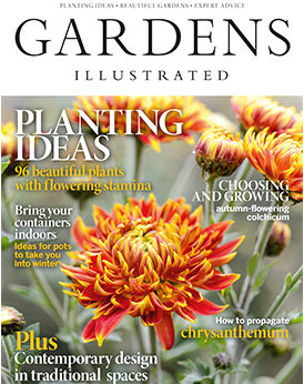 Gardens Illustrated November 2019