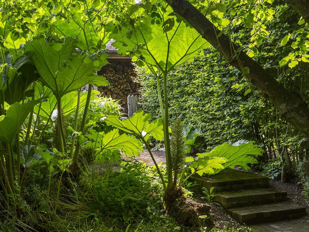 Kent Garden Design Company