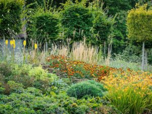 Landscape Design By Marian Boswall