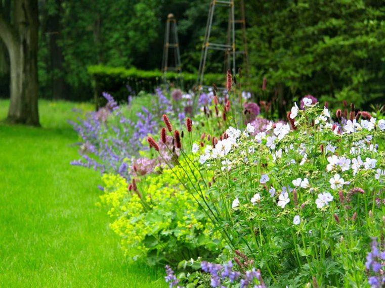 Landscape Garden Conservation