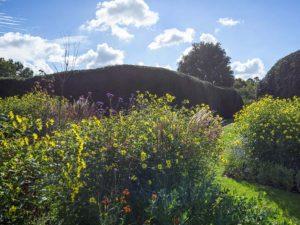 Landscape Garden Design Sussex