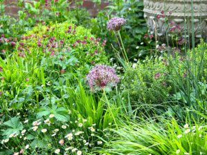 Magical Garden Design