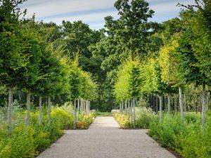 Marian Boswall Contemporary Gardens