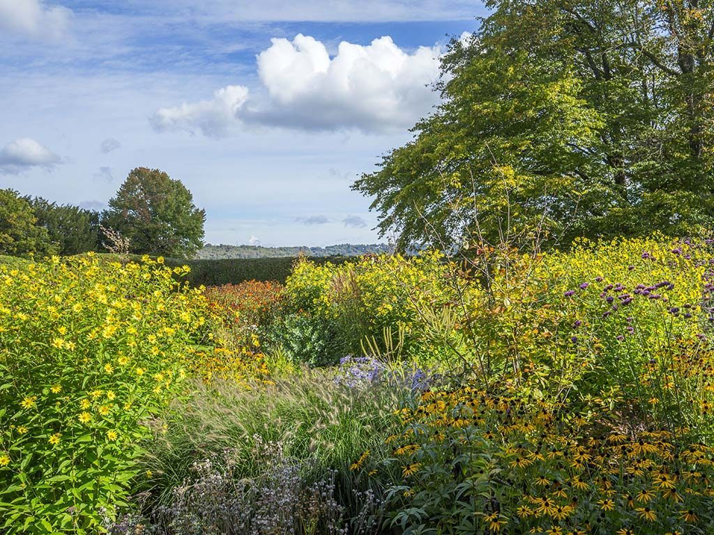Marian Boswall Garden Design Sussex