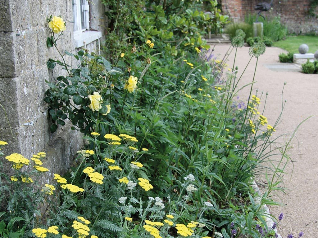 Marian Boswall Herb Garden Design