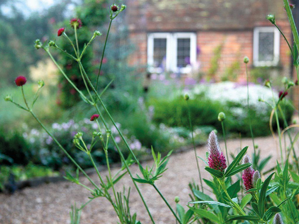Organic Garden Design Kent