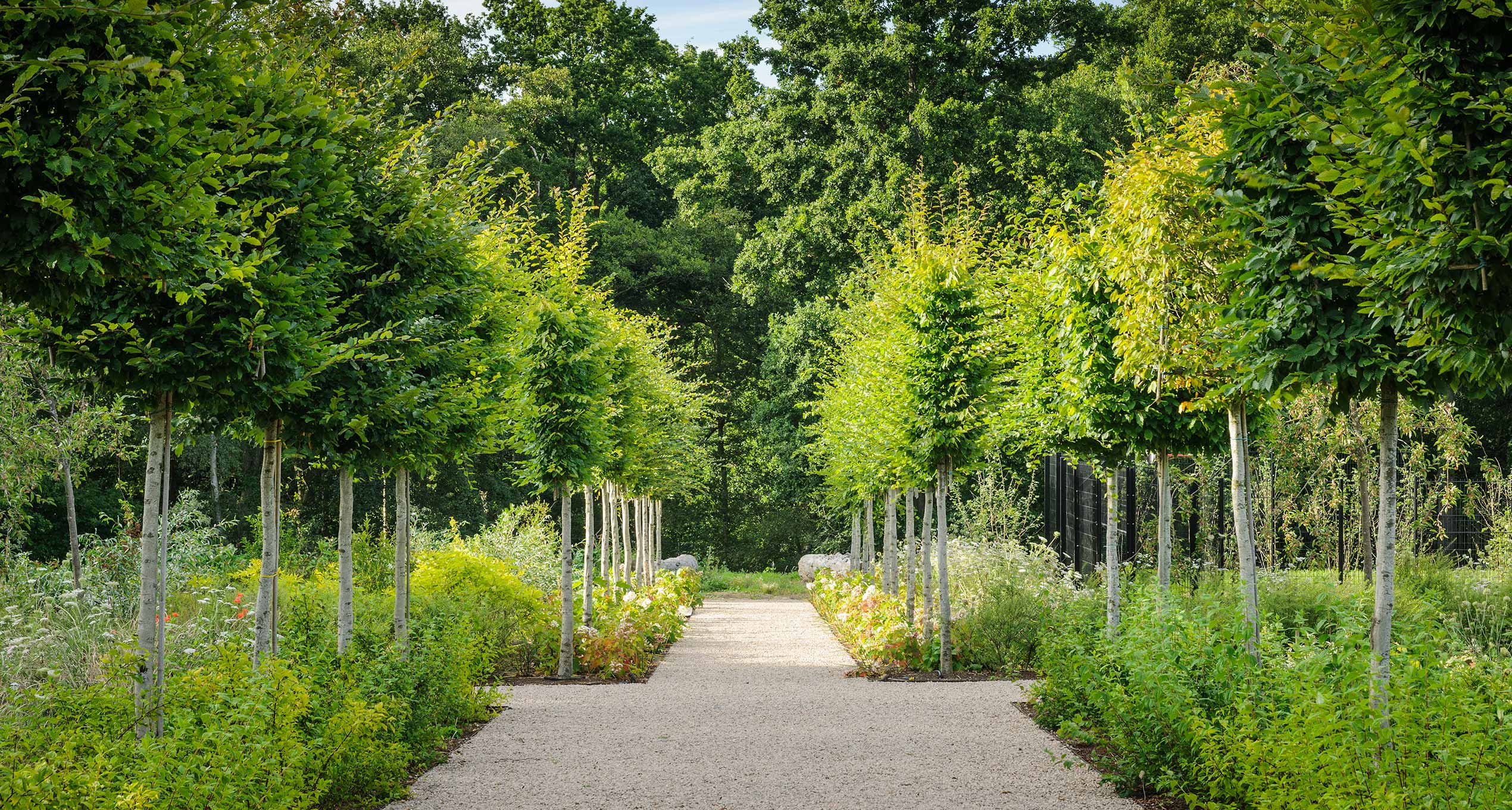 Professional Landscape Architects