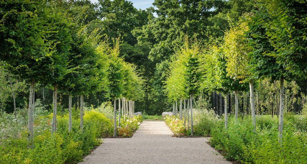 Professionl Landscape Architects