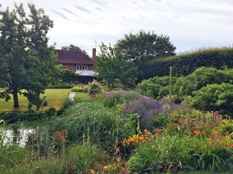Woodland Gardens By Marian Boswall